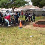 Garden soil - Cause Marketing